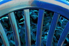 harry-blau07