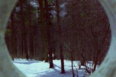 LHA_rahmen-2