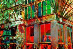 hku-berlin-okt2017-11-tt4tropische-pflanzen